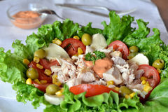 Fresh mixed vegetable salad with chicken Stock Image
