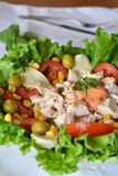 Fresh mixed vegetable salad with chicken Stock Images