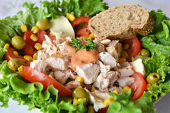 Fresh mixed vegetable salad with chicken Royalty Free Stock Photo
