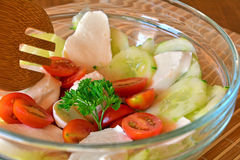 Fresh mixed vegetable salad with cucumber,mozzarella and tomatoes Royalty Free Stock Image