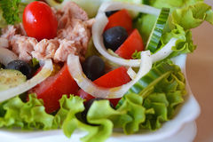 Fresh mixed vegetable tuna salad Stock Image
