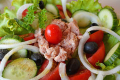 Fresh mixed vegetable tuna salad Stock Images