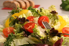 Fresh mixed vegetables salad Royalty Free Stock Images