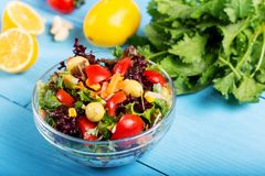 Fresh mixed vegetables salad in a bowl. On wooden background royalty free stock photos