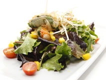 Fresh mixed vegetables salad with prawns Royalty Free Stock Photo