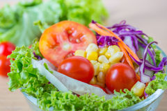 Fresh mixed vegetables salad Stock Images