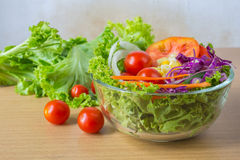 Fresh mixed vegetables salad. Stock Image