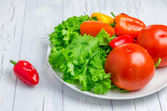 Fresh mixed vegetables. On the white plate Stock Photography