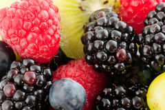 Fresh mixture of fruit Stock Photography
