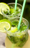 Fresh mojito cocktail Royalty Free Stock Photos
