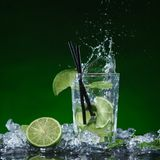 Fresh mojito cocktail Royalty Free Stock Images