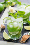 Fresh mojito cocktail in glass Stock Image