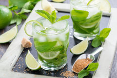 Fresh mojito cocktail in glasses Stock Photography