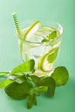 Fresh mojito cocktail over green background Royalty Free Stock Image