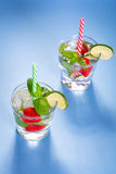 Fresh mojito cocktails Stock Image