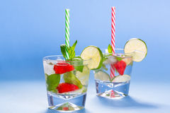 Fresh mojito cocktails Royalty Free Stock Photos