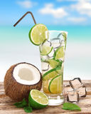 Fresh mojito drink Royalty Free Stock Images