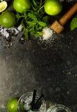 Fresh mojito drink Royalty Free Stock Photo