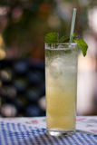 Fresh mojito with mint in a glass Stock Image