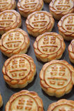 Fresh mooncakes on a baking pan Royalty Free Stock Photography