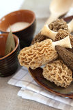 Fresh morel mushrooms Stock Photos