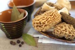 Fresh morel mushrooms Stock Photos