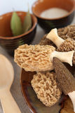 Fresh morel mushrooms on a plate Stock Photo