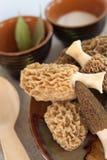 Fresh morel mushrooms on a plate. Fresh spring morel mushrooms on a plate Stock Photo