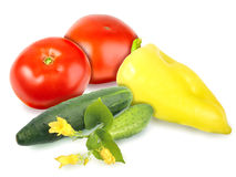 Fresh motley vegetables Royalty Free Stock Photography