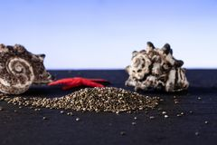 Fresh mottled chia seeds blue gradient stock photo