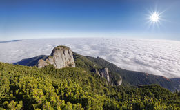 Fresh mountain landscape. Mystic mountain landscape with fog, wide view. Romanian Carpathians Stock Photos