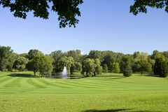 Fresh Mowed Fairway Pattern Royalty Free Stock Photos