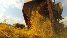 Fresh Mown Hay Falling Out Of Combine Trailer stock footage