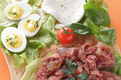 Fresh mozzarella appetizer with meat and eggs Royalty Free Stock Photo
