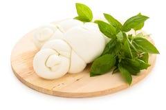Fresh mozzarella. Stock Photography