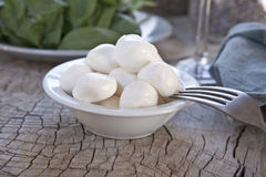 Fresh Mozzarella cheese. With basil in the background Stock Image