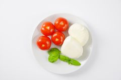 Fresh mozzarella and tomatoes Royalty Free Stock Images