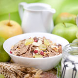 Fresh muesli Royalty Free Stock Photo