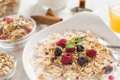 Muesli With Milk, Chia Seeds, Berries and Cinnamon Royalty Free Stock Photography