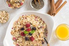 Muesli With Milk, Chia Seeds, Berries and Cinnamon Stock Photography