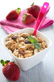 Fresh muesli with raisin Stock Photography