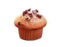 Fresh muffin Royalty Free Stock Image