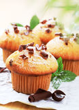 Fresh muffins Stock Photos