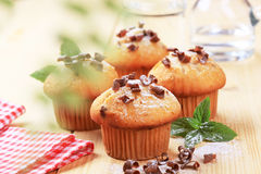 Fresh muffins Royalty Free Stock Image
