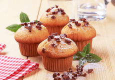 Fresh Muffins Stock Photography