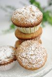 Fresh muffins royalty free stock photo