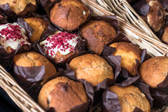 Fresh Muffins Royalty Free Stock Photography