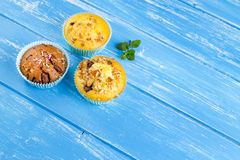 Fresh muffins with nuts and chocolate Royalty Free Stock Images