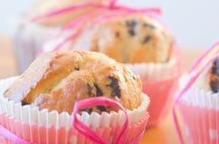 Fresh muffins Stock Photography