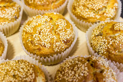 Fresh muffins with sesame on top Stock Image